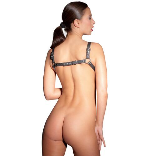 Leather Harness UK Size 8 to 12