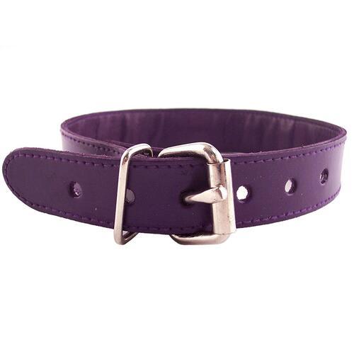Purple Studded ORing Studded Collar