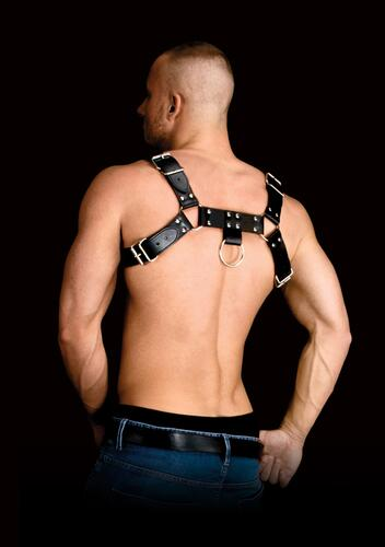 Costas 2 Chest Harness