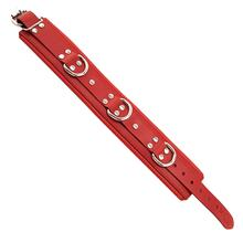 Red Padded Collar